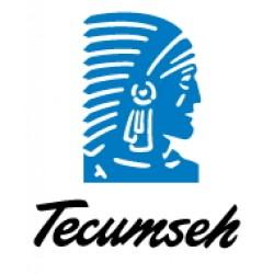 Компрессоры Tecumseh - L'unite hermetique (поршневые, герметичные)